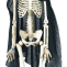 Skeleton Grim Reaper Halloween Decoration - Hanging Skelton Decoration (16 Inch)