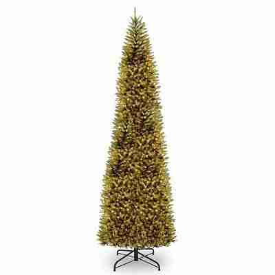 Kingswood Fir Pencil Tree with Clear Lights, 16 ft.
