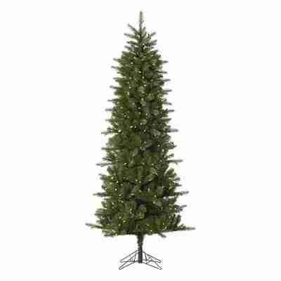 Vickerman Pre-Lit 10' Carolina Pencil Pine Artificial Christmas Tree, Spruce, LED, Warm White Lights