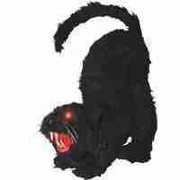Black Cat with Lights Sound Halloween Decoration