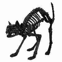 Crazy Bonez Black Skeleton Cat