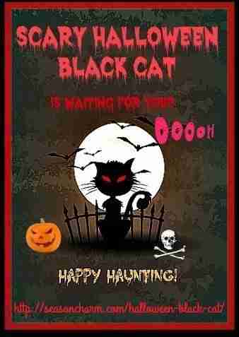 Scary Halloween Black Cat Prop Ideas