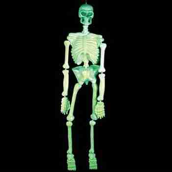 Glow In The Dark Hanging Halloween Skeleton