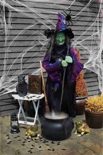 Witch Outdoor Decor