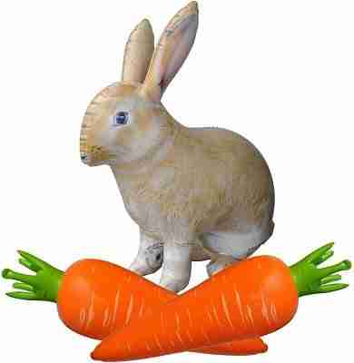 Inflatable Stuffed 30 inch Bunny Rabbit Animal and 25 inch Carrot